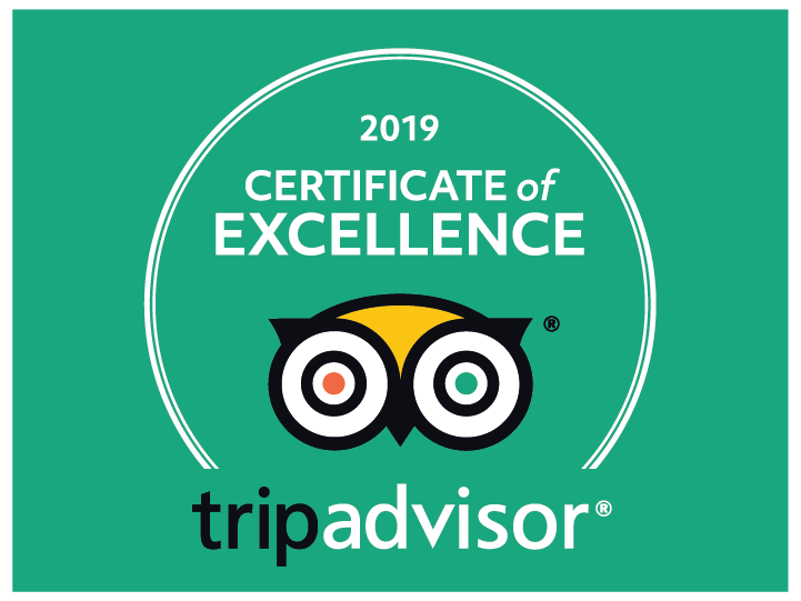 Trip Advisor logo. An owl-like cartoon image, with one red pupil and one green pupil.